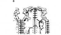6. Свяжите панели веревкой вместе