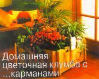 Фото цветочной клумбы