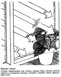 Пороки стекла
