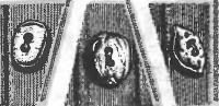 Пуговицы из косточек