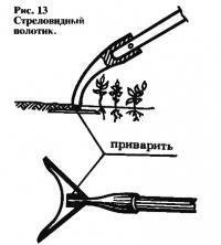 Рис. 13. Стреловидный полотик