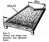 Рис. 1. Лоток для сбора смородины или крыжовника