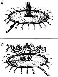 Рис. 3. Поливочное устройство из шланга: а) с тройником, б) упрощенное