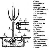 Рис. 4. Схема кольцевого полива конструкции С.Солодовника