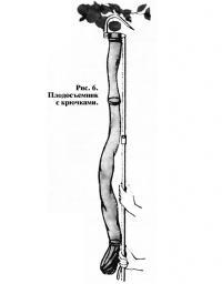 Рис. 6. Плодосъемник с крючками