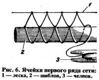 Рис. 6. Ячейки первого ряда сети