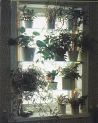 Внешний вид стеклянных полок
